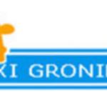 Taxi Groningen - logo